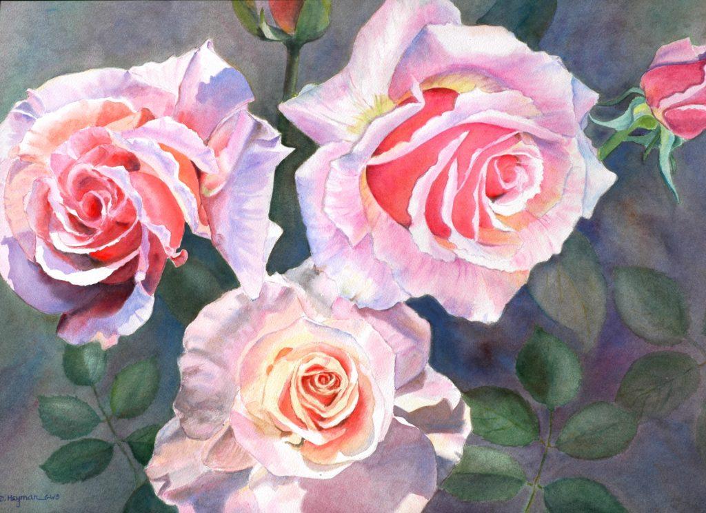 Roses VII