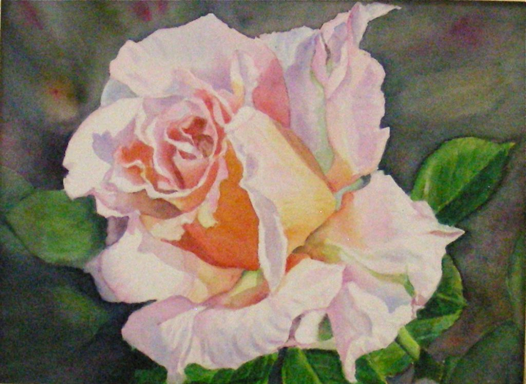 A Single Rose - SOLD